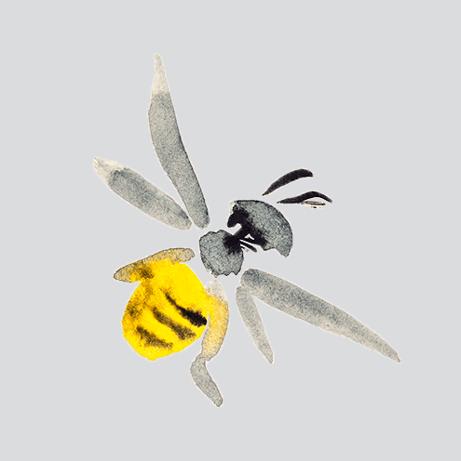 Wie bACaue ich ein Bienenhotel?